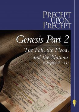 Image of cover for Genesis Part 2 PUP - The Fall, the Flood, and the Nations (Chapters 3-11)
