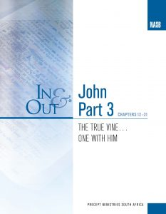 Image of cover for The Gospel of John Part 3 In & Out - The True Vine...One with Him (Chapters 12-21)