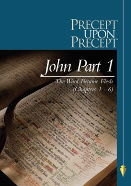 Image of cover for The Gospel of John Part 1 PUP - The Word Became Flesh (Chapters 1 - 6)