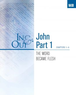 Image of cover for The Gospel of John Part 1 In & Out - The Word Became Flesh (Chapters 1-6)