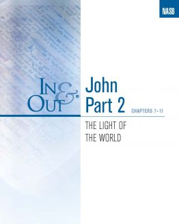 Image of cover for The Gospel of John Part 2 In & Out - The Light of the World (Chapters 7-11)