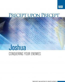 Image of cover for Joshua PUP - Conquering Your Enemies
