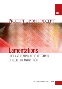 Image of cover for Lamentations ESV PUP - Hope and Healing in the Aftermath of Rebellion Against God