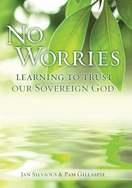 Image of cover for No Worries: Learning to Trust Our Sovereign God