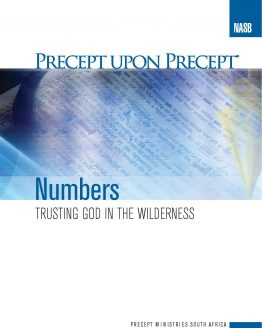 Image of cover for Numbers PUP - Trusting God in the Wilderness