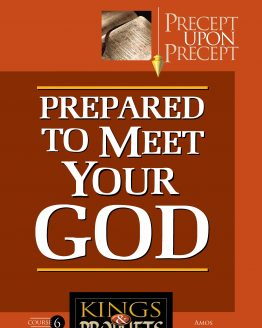 Image of cover for Kings and Prophets 6 PUP - Prepared to Meet Your God (Amos)