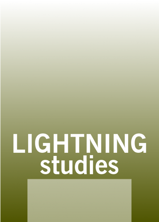 Image Thumbnail of Lightning Studies