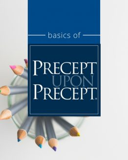 Basics Of Precept Upon Precept Image